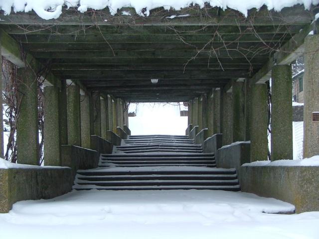 winter, february 7th, 2013 006