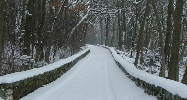 winter, february 7th, 2013 031
