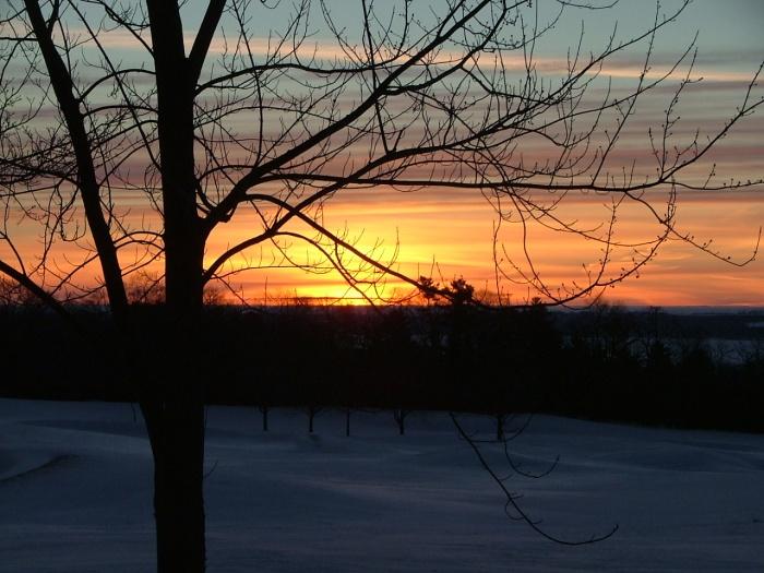 3 March, 2013, sunrise,, green lake, trees, 001