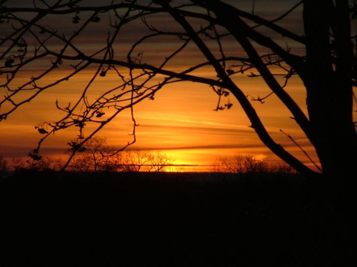 3 March, 2013, sunrise,, green lake, trees, 007