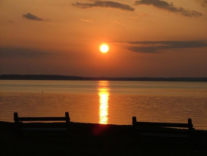 april 27th, 2013 sunrise, birds, benches 015