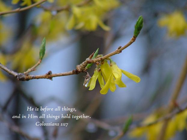 In Him Colossians 1;17