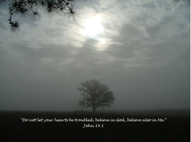 John 14;1