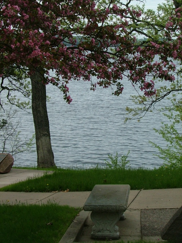 spring, flowers, water, boat, May 20th, 2013 025