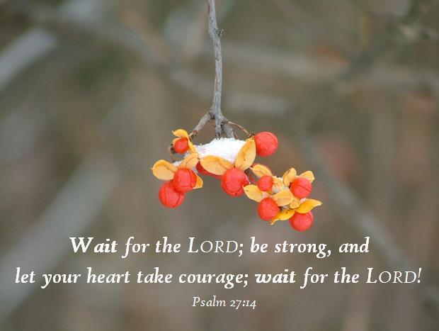 Wait;Psalm 27;14