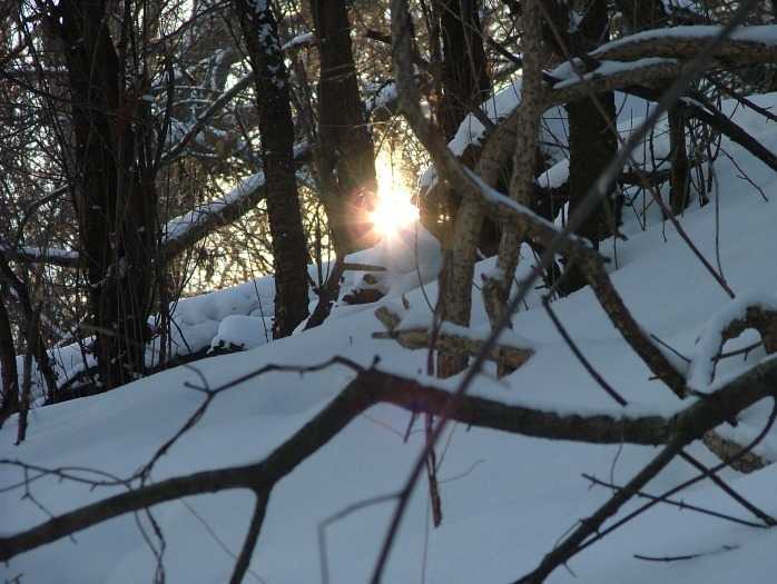 afternoon walk -February 001