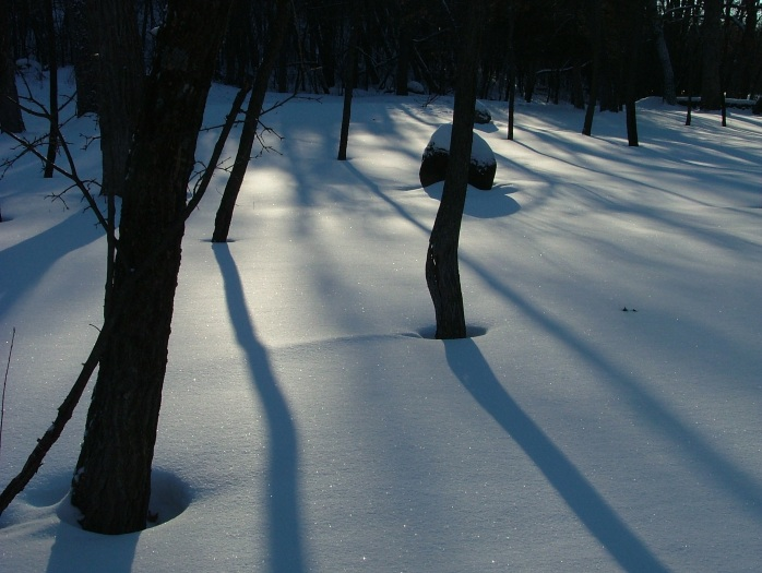 afternoon walk -February 005