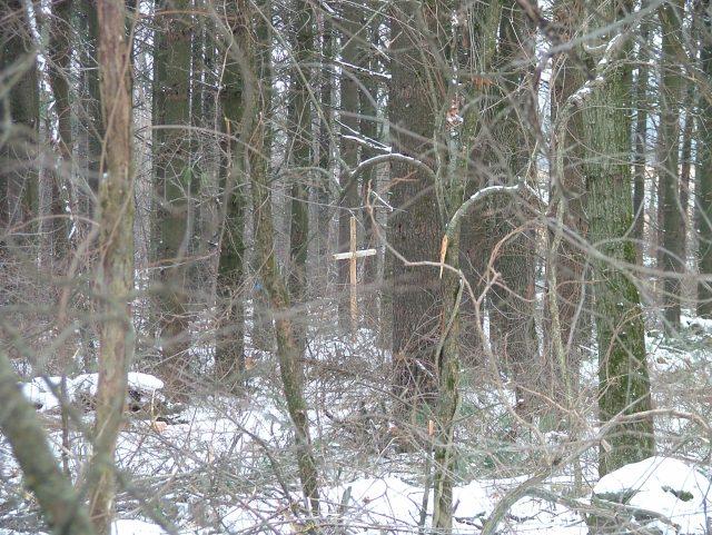 cross in woods February 2014 002