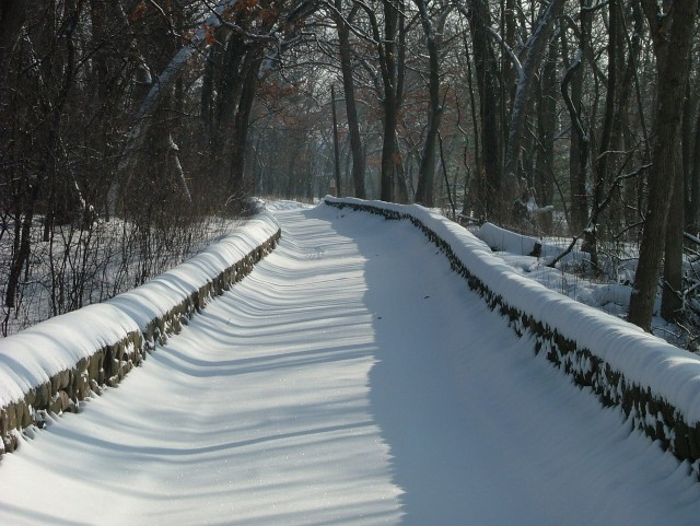 snowy-february-morning-043.jpg