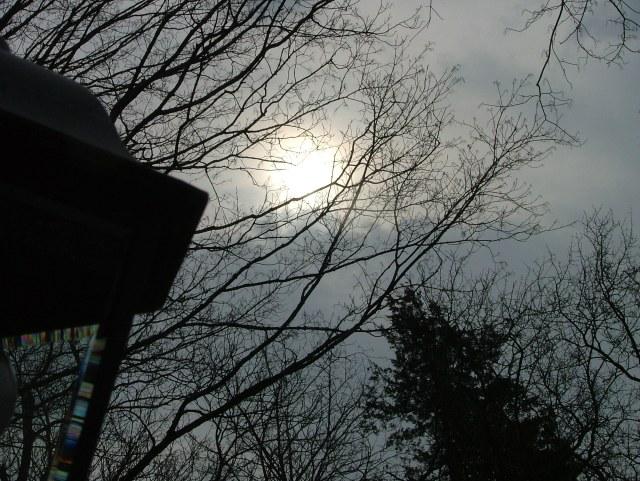 light april morning 004